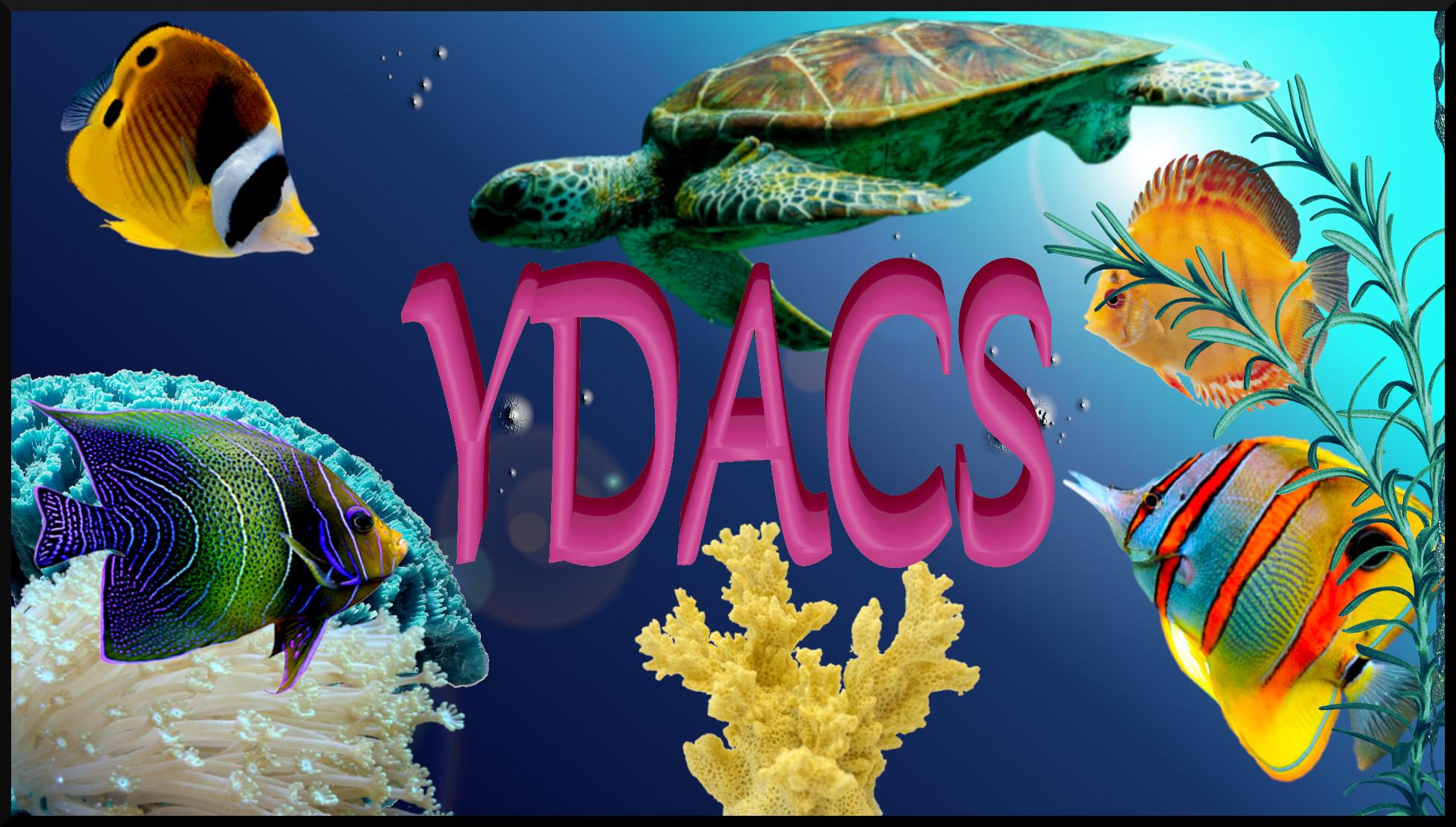 YDACSOceanFish
